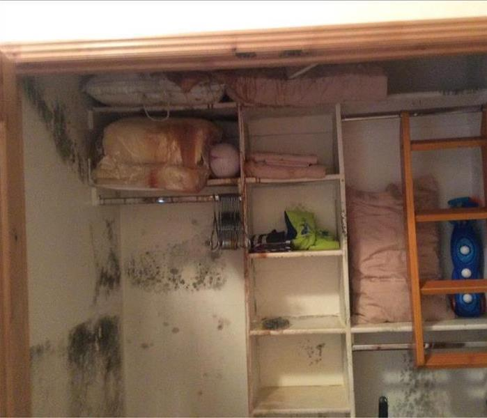 Why do I have mold in my closet?