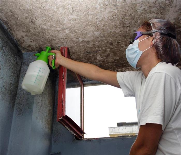 Image of a person wearing a maks is spraying mold found on the roof