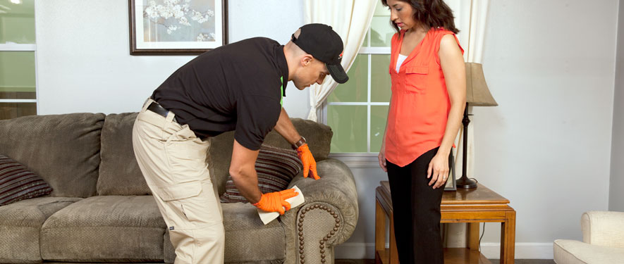 Ogden, UT carpet upholstery cleaning