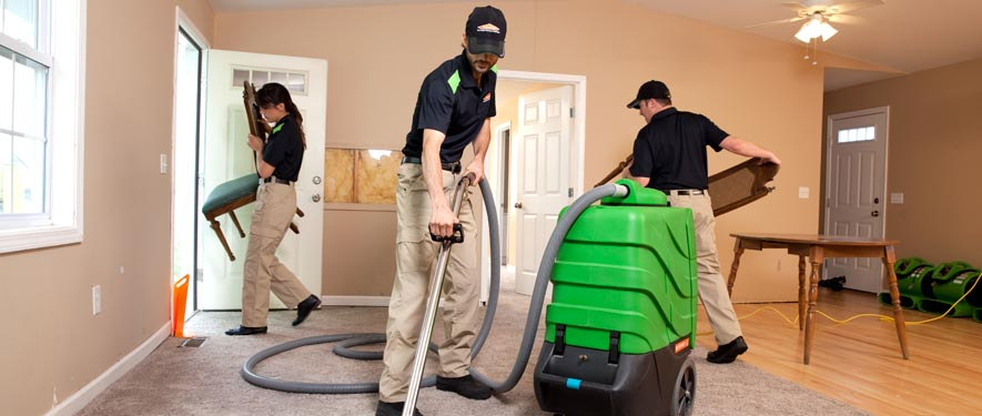 Ogden, UT cleaning services